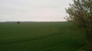 Bild 7 - Ein Blick auf das ehemalige Schlachtfeld...