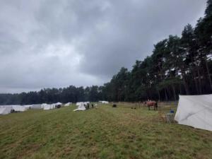 Bild 04 - So langsam füllt sich das Lager.